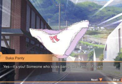 Panty Party – Kämpfe gegen böse Höschen!